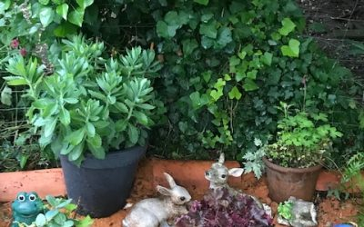 Rendezvous aux jardins
