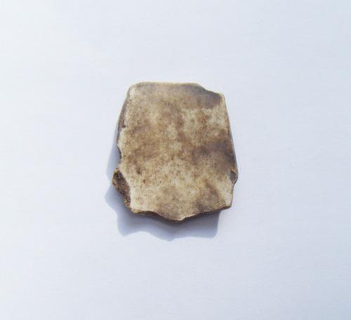 Fragment-43-reverse